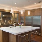 Modern Eucalyptus Kitchen