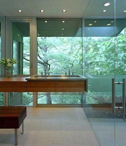 modern bath with outside glass wall and glass shower