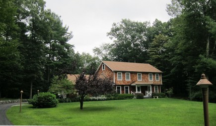 power outage - tall trees surrounding our house ahead of Hurricane Irene - Atticmag