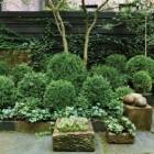 All Green Gardens
