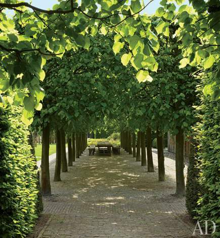 linden tree allee in Belgium by Wirtz International via Architectural Digest