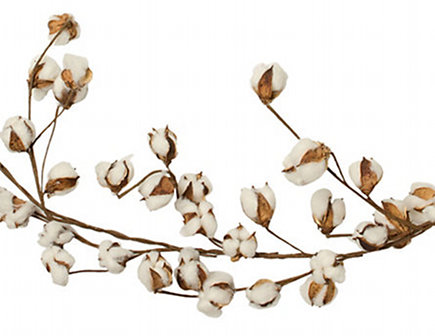natural wood home accessories - natural cotton boll garland from shop terrain via Atticmag