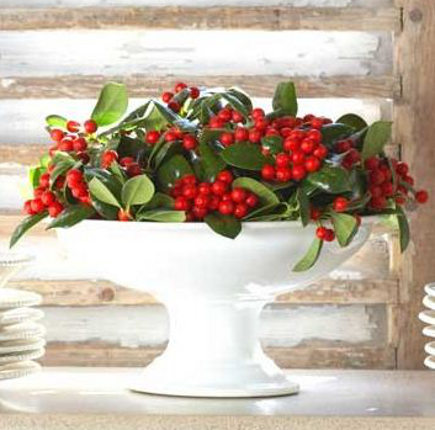 red berries and green leaves in a porcelain compote dish
