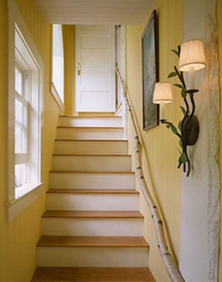 paper birch tree limb used for staircase handrail