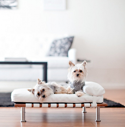 modern pet furniture   mid century modern pet beds   ModPet NYC via Atticmag. Handcrafted Modern Pet Furniture