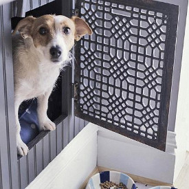dog in a gated interior built in for pets