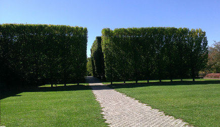 architectural museum garden - walkway approach to Robert Irwin designed garden at DIA Foundation, Beacon, NY - atticmag
