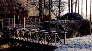 Mild Winter Garden