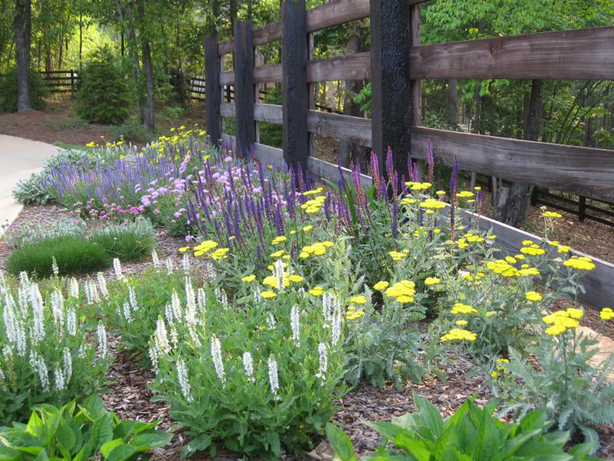 cottage gardening - perennial bed along driveway in the spring in Alabama - Atticmag