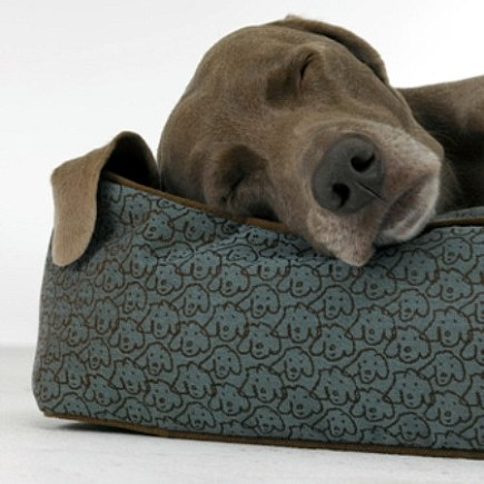 super fabrics - blue stain resistant Crypton pet bed with dog print -crypton via atticmag