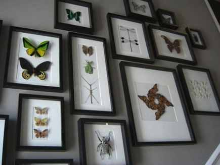 framed collection of real butterflies on a stair case wall - via Atticmag