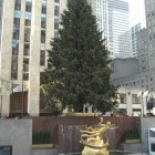 Fifth Avenue Christmas - The Christmas tree in Rockefeller Center above the skating rink - Atticmag