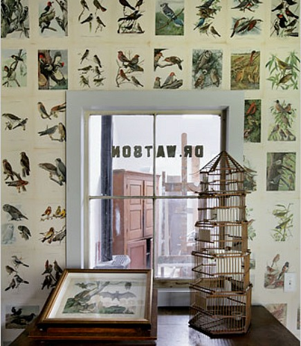 alternatives to wallpaper - wall papered with pages from The Birds of New York via Atticmag