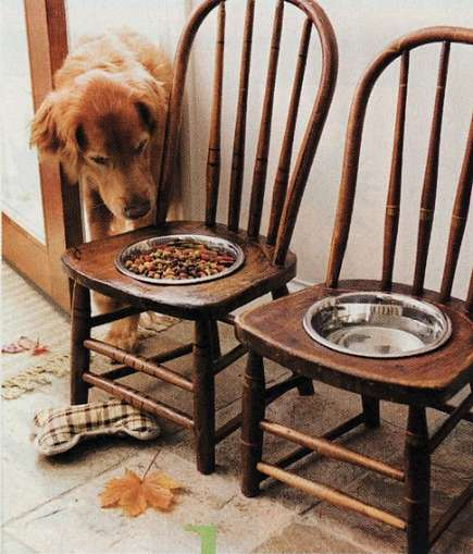 built ins for pets - raised dog feeding station made from vintage childrens chairs - bh&g via Atticmag