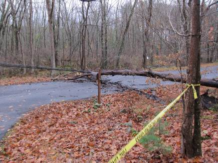 power outage - my driveway taped off for protection against a downed power line - Atticmag