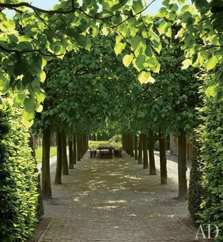 all green gardens - linden tree allee in Belgium by Wirtz International Architectural Digest via Atticmag