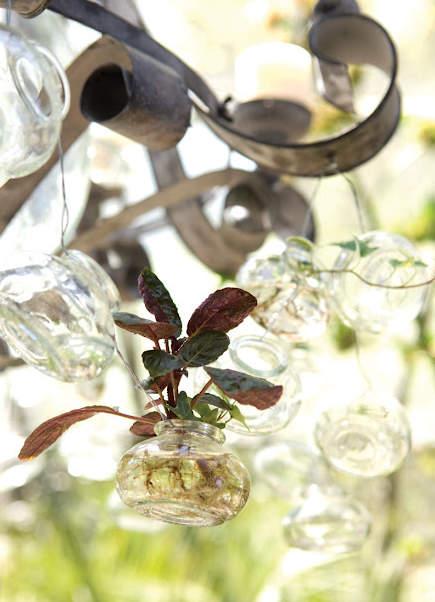 greenhouse rooms - chandelier detail in the 40th Annual Atlanta Decorator's Show House solarium - shadestonehome via atticmag