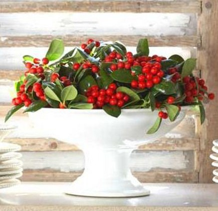 Christmas berry decor - red berries and green leaves in a porcelain compote dish - verdegrisvie via atticmag