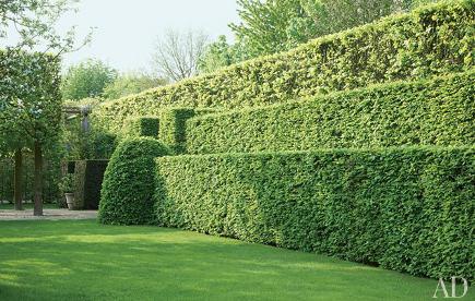 living walls - sculptured hedge garden by Wirtz International - AD via Atticmag
