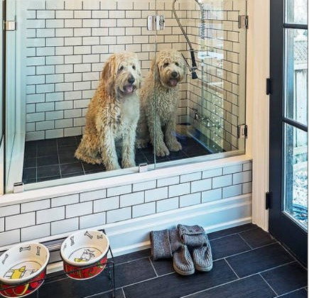 pet shower in a mudroom – livesimplybyannie via atticmag