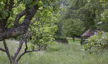 long barn gardens- natural meadow remains unmanicured - period living via atticmag