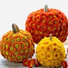 fall flower pumpkins by Alix Astir, of Trellis Fine Florals - atticmag