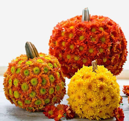 fall flower pumpkins by Alix Astir, of Trellis Fine Florals - atticmag