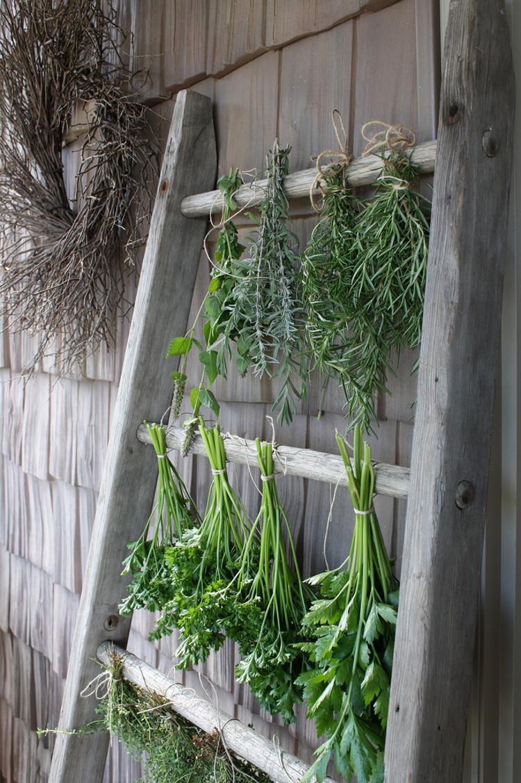 outdoor home décor ideas - vintage herb and flower drying ladder - flickr/umelecky via Atticmag