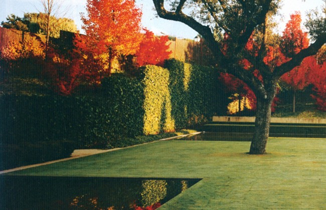 fernando caruncho - an autumn garden with brillant maple leaf color behind the hedges - house & garden via atticmag