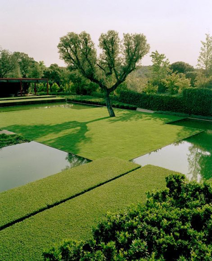 fernando caruncho - all green garden with stepped hedges, reflecting pool and native tree - landscapefocused.tumblr.com/Bruno Suet via Atticmag
