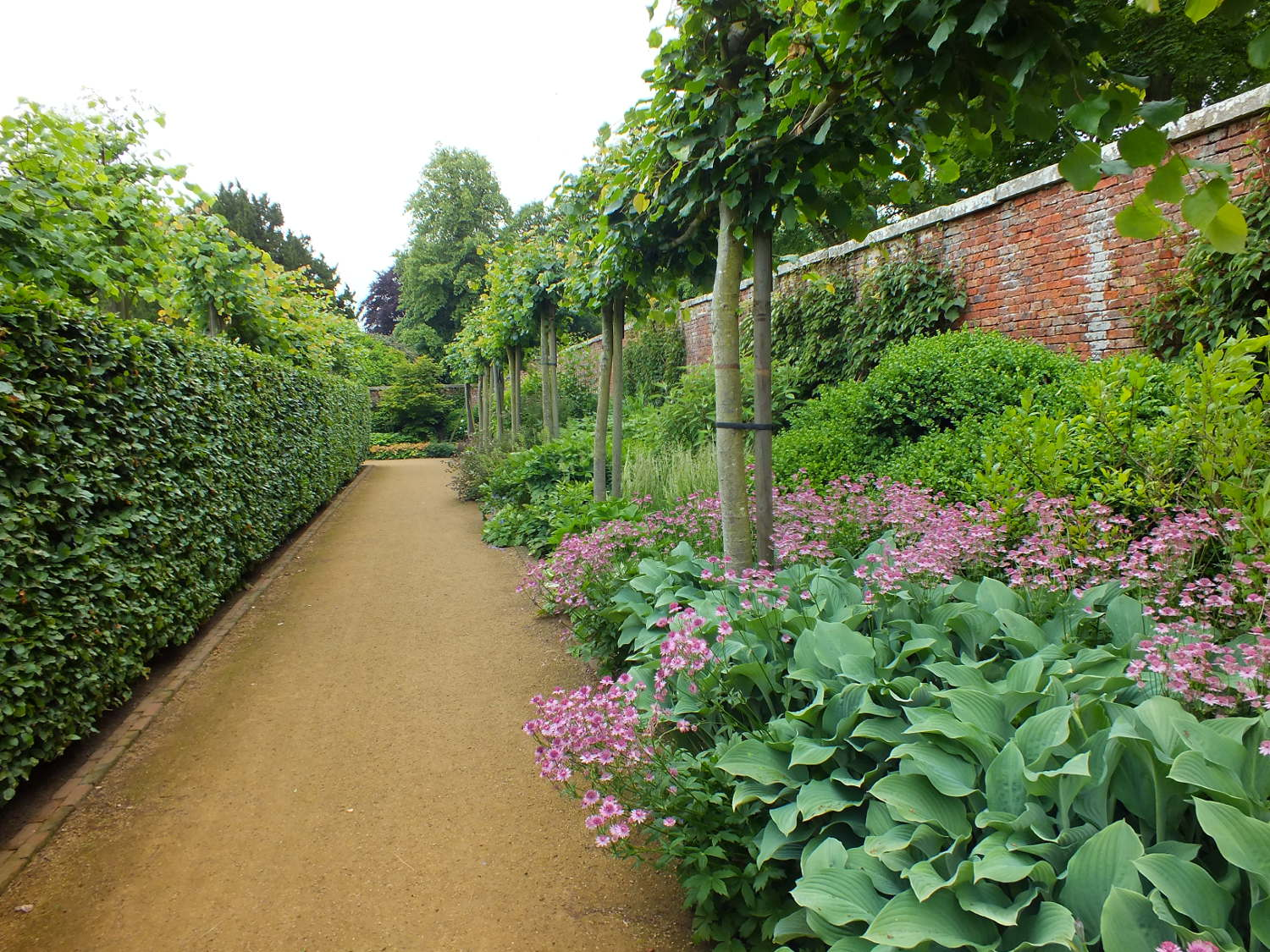 walled gardens - walled border walkways of the Scampston Estate walled garden with hedges and pleached lime trees - Teddington Gardener via Atticmag
