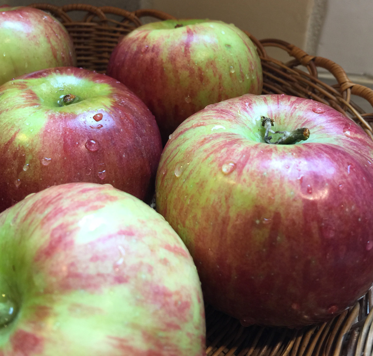 apple maple cobbler - medium size Cortland apples, good for cooking - Atticmag.com