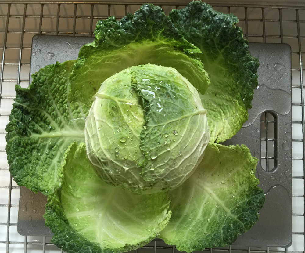 savoy cabbage used in Thai Taste Cole Slaw - atticmag.com
