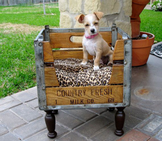 small pet beds - milk crate pet bed on wooden legs - pinterest via atticmag
