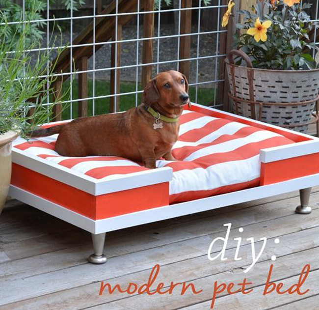 small pet beds - orange and white pet bed on steel legs - centsational girl via atticmag