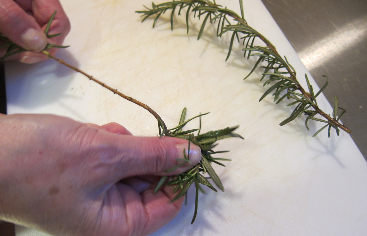 rosemary focaccia - stripping rosemary leaves off the branch - Atticmag